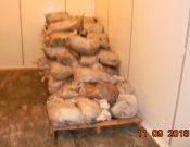 В Брянской области пресечена попытка незаконного ввоза более 2 тонн животноводческой продукции