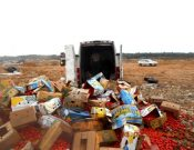 Об уничтожении более 3 тонн растительной продукции неизвестного происхождения
