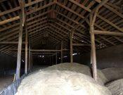 Сельхозпредприятие в Смоленской области нарушило требования законодательства о семеноводстве