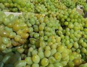 Об обеспокоенности Управления Россельхознадзора в связи с неоднократным выявлением превышения содержания остаточных количеств пестицидов в турецком винограде