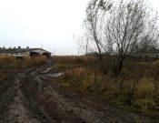 Типичные нарушения ветеринарного законодательства выявлены на животноводческой ферме в Трубчевском районе