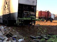 В Смоленской области утилизировано более 9 тонн яблок неизвестного происхождения