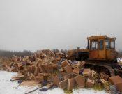 В Смоленской области утилизировано более 76 тонн продукции растительного происхождения