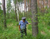 В 2020 году Управлением Россельхознадзора проведен мониторинг карантинного фитосанитарного состояния Калужской области на площади 673 тыс. га