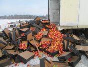 В Смоленской области утилизировано около 55 тонн запрещенной к ввозу подкарантинной продукции