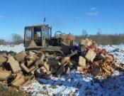 В Брянской области уничтожена растительная продукция неизвестного происхождения