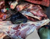 Более 8 тонн мяса и субпродуктов неизвестного происхождения, качества и безопасности утилизированы в Смоленской области