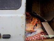 В Смоленской области утилизировали тонну говядины, неизвестного происхождения качества и безопасности