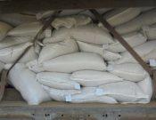 В Смоленской области запрещен ввоз семян, не включенных в Государственный реестр селекционных достижений