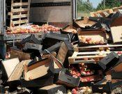 В Брянской области утилизированы яблоки неизвестного происхождения