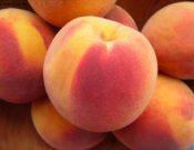 В Смоленской области утилизированы персики и яблоки неизвестного происхождения