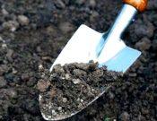 Контроль за содержанием в почве остаточных количеств пестицидов должен осуществляться