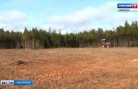 Видео. Неиспользуемые земли Смоленщины инвентаризируют и вовлекут в сельхозоборот. ГТРК «Смоленск»