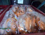 В Смоленской области пресечен незаконный ввоз из Республики Беларусь колбасных изделий, в том числе выработанных предприятиями, временно ограниченными для поставок в Россию