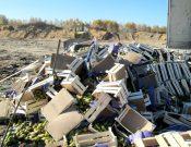 Более 8 тонн груш, нелегально ввезенных с территории Республики Беларусь, уничтожены в Смоленской области