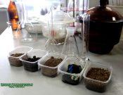 Исследование почвы на показатели плодородия и содержания вредных веществ