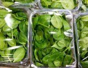 В Смоленской области запрещен ввоз двух партий  белорусских салатов без документов