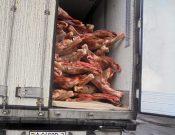 Управлением Россельхознадзора возвращена очередная партия поступившей из Республики Беларусь говядины, перевозимой с нарушением правил клеймения