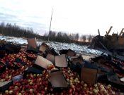 В Смоленской области уничтожено более 48 тонн груш и яблок, которые пытались нелегально ввезти с территории Республики Беларусь без документов, либо под видом товара прикрытия