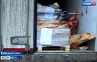 Видео.Белорусское мясо дважды штурмовало смоленский участок госграницы, ГТРК «Смоленск»