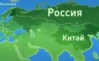 Видеоинструкция Россельхознадзора: как путешествовать с домашним животным транзитом через территорию России