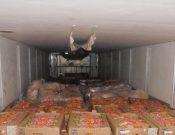 Управлением Россельхознадзора выявлен очередной факт ненадлежащего контроля со стороны белорусской ветеринарной службы за животноводческой продукцией, поставляемой в Россию