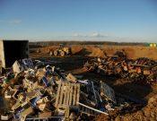 В Смоленской области пресечены попытки нелегального ввоза около 36 тонн яблок и груш