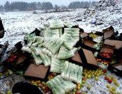 В Брянской области на полигоне ТКО вновь уничтожена подкарантинная продукция неизвестного происхождения, качества и безопасности