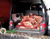 Видео. Гражданин Республики Беларусь вновь пытался нелегально провезти мясо в Брянскую область