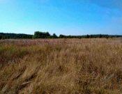 Юбилей закона о муниципальном земельном контроле в Брянской области или как повысить эффективность работы муниципального земельного контроля