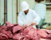 За две недели брянские предприятия отправили в Сербию, Польшу, Саудовскую Аравию, Монголию и Украину 500 тонн продукции животноводства