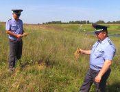 В Смоленской области в 2020 году обследования на наличие карантинных объектов проведены на площади более 698 тысяч гектаров