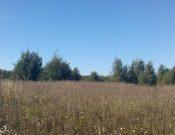 В ходе административных  обследований в Калужской области  выявлены нарушения требований земельного законодательства на землях сельскохозяйственного назначения