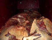В Смоленской области утилизировано 1300 кг нелегально ввезенного мяса неизвестного происхождения