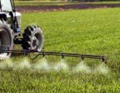 За нарушение законодательства РФ при применении пестицидов брянские предприятия привлечены к административной ответственности