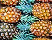 В Брянской области запрещен ввоз более 20 тонн ананасов, следовавших транзитом через территорию Украины
