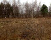 Невведение собственницей в сельскохозяйственный оборот земельного участка повлекло за собой его изъятие