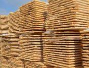 Более 22 тысяч кубометров лесопродукции проконтролировано Управлением Россельхознадзора за 2020 год при отправке из Калужской области на экспорт и в другие регионы