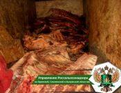 С территории Республики Беларусь пресечен нелегальный ввоз мяса неизвестного происхождения, а также готовой мясной и молочной продукции без документов
