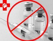 В обороте может находиться контрафактный лекарственный препарат для ветеринарного применения «Bonharen Intravenous»