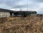 В Смоленской области нарушения, выявленные Управлением Россельхознадзора, послужили основанием для временной приостановки деятельности предприятия по убою