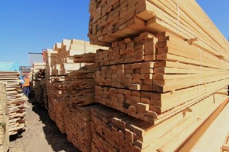 Управлением Россельхознадзора проконтролировано около 23 тысяч кубометров лесопродукции при отправке из Калужской области