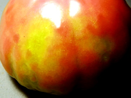 В Смоленской области пресечён ввоз с территории Республики Беларусь более 43 тонн томатов, зараженных вирусами