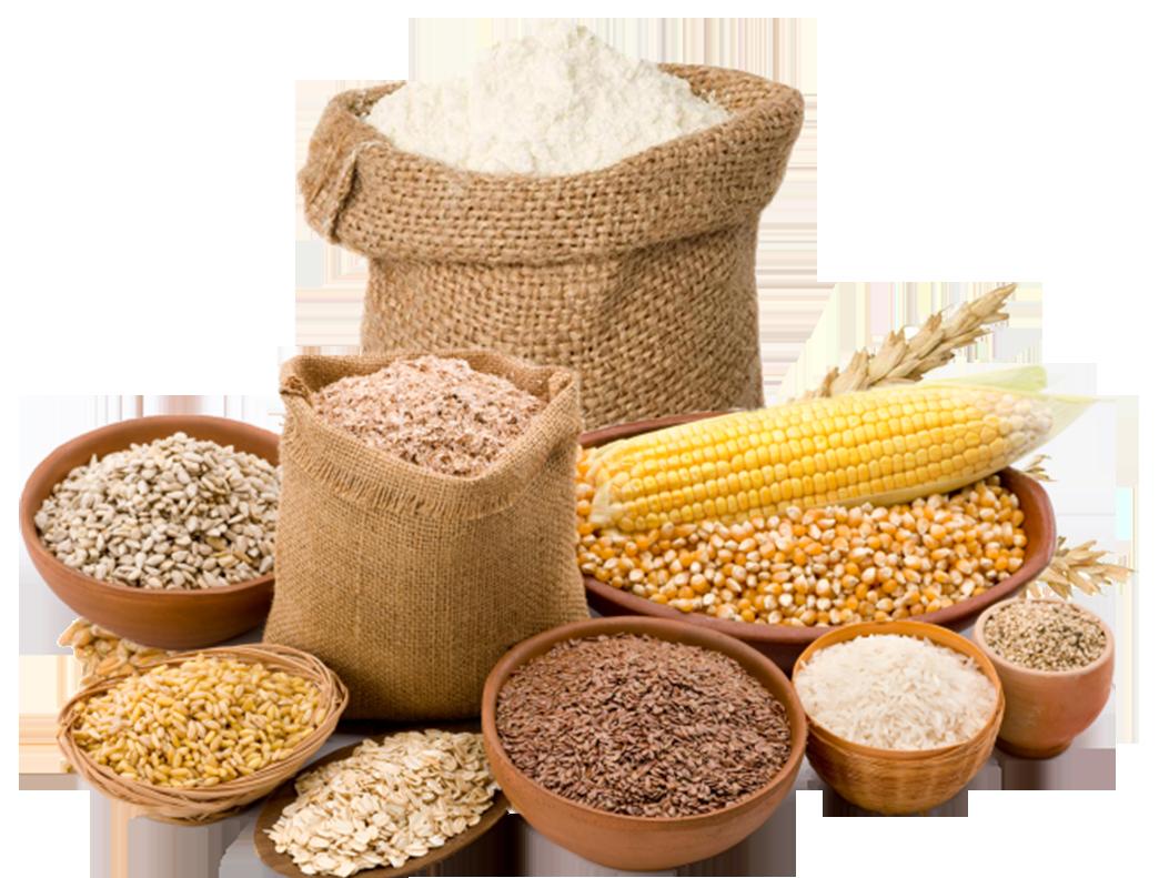 Контроль ввозимого зерна и продуктов его переработки выявил несколько партий небезопасной муки