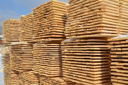 Перевозчик привлечен к административной ответственности за вывоз леса без необходимых документов из карантинной фитосанитарной зоны Калужской области