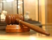 За нарушение земельного законодательства собственнику зарастающих земельных участков придется заплатить штраф в размере 50 тысяч рублей