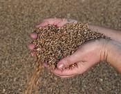 Смоленское сельскохозяйственное предприятие нарушало требования Технического регламента Таможенного союза